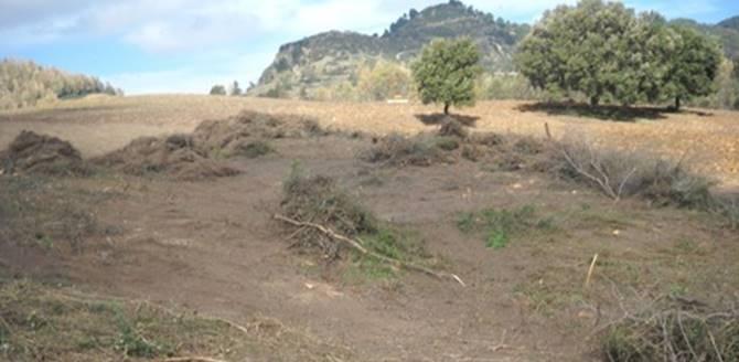 Terreno sequestrato nel Crotonese, foto Ansa