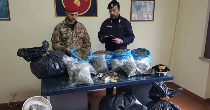 Marijuana e armi nel Vibonese