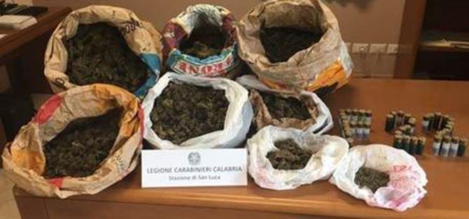 Marijuana e munizioni rinvenute