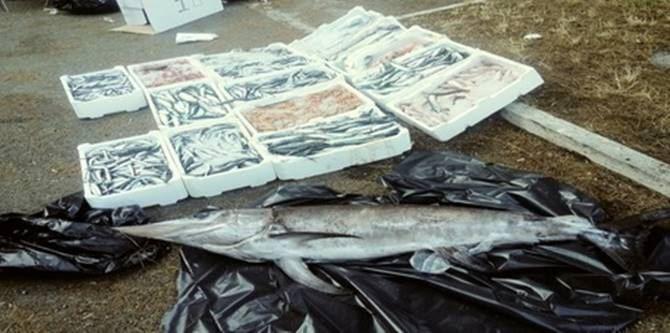 Gioia Tauro, prodotto sequestrato
