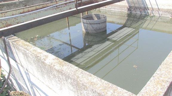 A montalto la fogna scorre nell 39 alveo del torrente annea for Cabine nere del torrente