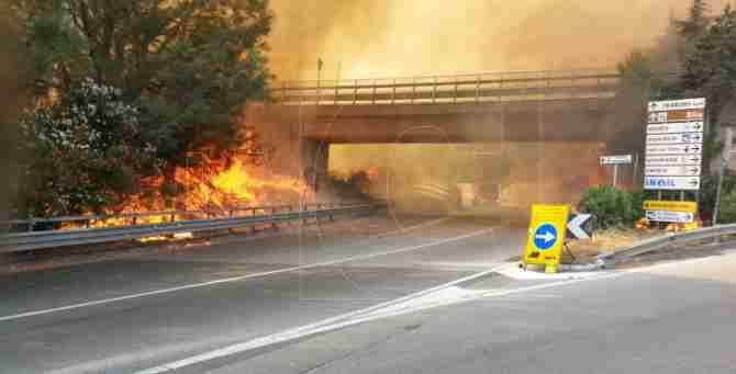 Vasto incendio a Catanzaro nelle vicinanze di due parchi