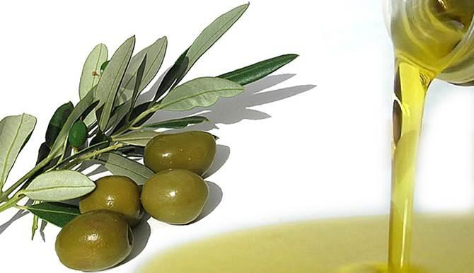 Vendevano falso olio extravergine italiano: ecco da dove proveniva